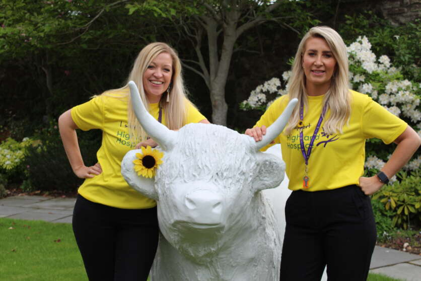 Highland Hospice Launches Search for Heilan' Coo Artists image